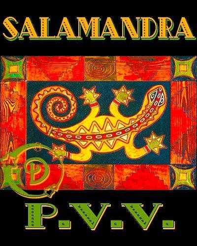 Логотип Salamandra P.P.V